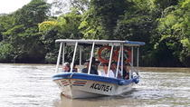 Palo Verde Boat Tour from Playa del Coco Area, Playa Hermosa, Day Trips
