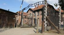 Auschwitz and Birkenau Memorial and Museum Guided Tour from Krakow, Krakow, Historical & Heritage ...