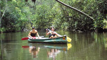 Noosa Everglades Wilderness Cruise with Canoe Trip, Noosa & Sunshine Coast, Day Cruises