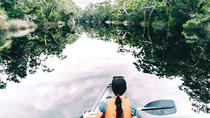Overnight Noosa Everglades Canoe and Camping Tour from Noosa or Rainbow Beach, Rainbow Beach, ...