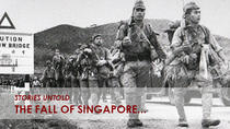 Private Tour: The Fall of Singapore WWII, Singapore, Historical & Heritage Tours