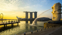 Singapore Changi Airport: Private Arrival Transfer with Meet and Greet Service, Singapore, Airport...