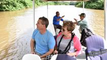Authentic Experience at the Caño Negro Wetlands by Boat