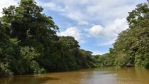 Authentic Experience at the Caño Negro Wetlands by Boat, La Fortuna, Day Trips