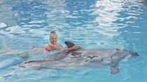 Ocho Rios Dolphin Swim, Ocho Rios, Bike & Mountain Bike Tours