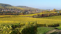 Private Custom Tour of Alsace Region with Wine Tasting from Strasbourg, Strasbourg, Day Trips