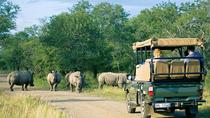 4 Day Kruger Safari: Treehouse, Johannesburg, Multi-day Cruises