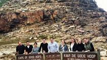 Ultimate Cape Point Full-Day Tour from Cape Town, Cape Town, Day Trips