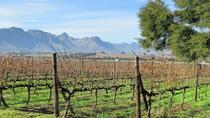 Wine Tasting Cape Town Winelands, Cape Town, Day Trips