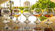 Rum Tasting Tour of Casa Bacardí, San Juan