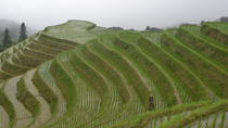One Day Private Longshen Rice Terraces Tour Including Lunch, Guilin, Private Day Trips