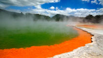 Rotorua Eco Thermal Small Group Full-Day Tour, Rotorua, Thermal Spas & Hot Springs
