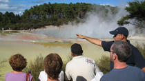 Rotorua Eco Thermal Small Group Morning Tour, Rotorua, Multi-day Tours