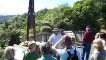 Tribal Footprints Tour, Rotorua, Half-day Tours