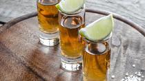 Tequila Tour from Guadalajara, Guadalajara, Day Trips