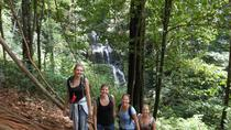 Browns-Mountain Day Trip from Paramaribo, Paramaribo, Day Trips