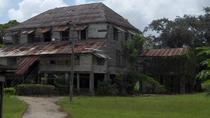 Commewijne Plantation, Paramaribo, Plantation Tours