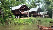Jaw Jaw - Isadou, Suriname, Multi-day Tours