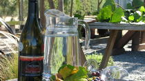 Martinborough Wine Tour, Wellington, Wine Tasting & Winery Tours