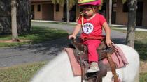 Children's Pony Ride in Miami , Miami, Horseback Riding