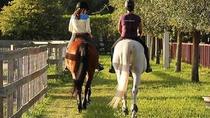 Horseback Trail Rides in Miami, Miami, Horseback Riding