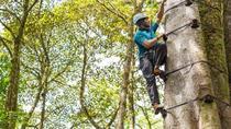 Arboreal Tree Climbing Sky Park from Monteverde, Monteverde, Climbing