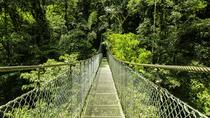 Arenal Hanging Bridges from Arenal, La Fortuna, Day Trips