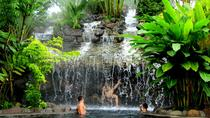 Arenal Volcano and Baldi Hot Springs from San José, San Jose, Day Trips