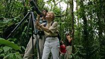 Birding tour from San José, San Jose, Eco Tours