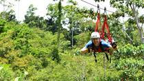 Canopy Zipline Tour with Superman Flight from Puerto Viejo or Cahuita, Limon, Ziplines