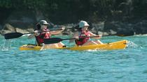 Damas Island Kayak Tour with Lunch from Manuel Antonio, Quepos, Kayaking & Canoeing