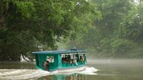 Day Trip to Irazu Volcano and Boat Ride on Sarapiqui River from San Jose, San Jose, Nature & ...