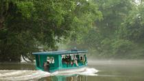 Day Trip to Irazu Volcano and Boat Ride on Sarapiqui River, San Jose, Nature & Wildlife