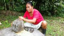 Full-Day Bribri Reserve Tour Including Shaman Purification Ritual and River Waterfall Hike, Limon,...