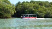 Half-Day Damas Island Mangrove Discovery by Boat from Manuel Antonio, Quepos, Day Cruises