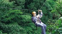 Half-Day Monteverde Zipline, Rainforest Canopy and Hanging Bridges Tour, Monteverde, Ziplines