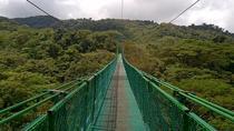 Hanging Bridges 2-hour Tour from Monteverde, Monteverde, Day Trips