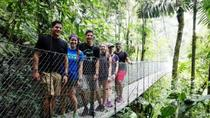 Hanging Bridges Adventure in San Luis from San Jose, San Jose, Day Trips