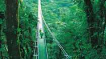 Hanging Bridges and Insect Museum from Monteverde, Monteverde, Day Trips