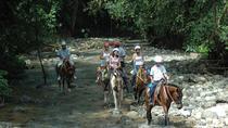 Horseback Riding from Manuel Antonio, Quepos, Horseback Riding