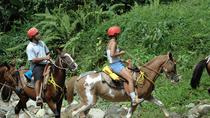 Horseback Riding Tour from Puntarenas, Puntarenas, Horseback Riding