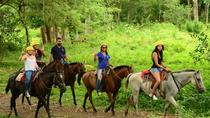 Horseback Riding with Waterfall Included from Jacó, Puntarenas, Horseback Riding