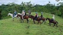 Horseback to La Fortuna Waterfall from Arenal, La Fortuna, Horseback Riding