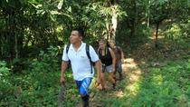 Kekoldi Hike and Swim from Puerto Viejo de Limon, Limon, Hiking & Camping