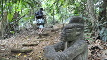 Puerto Viejo Jungle Adventure: Hiking, Rapelling, and Canopy Tour, Limon, Climbing