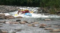 Reventazón River Whitewater Rafting Tour from Limon, Limon, White Water Rafting