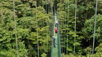 Sky Walk, Sky Tram, and Sky Trek Zipline Combo Tour from Monteverde, Monteverde, Ziplines