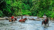 Small-Group Tour: Horseback Riding in Arenal River from La Fortuna, La Fortuna, Horseback Riding