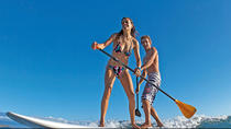 Boat Ride with Mangrove Paddle Boarding Tour, Miami, Stand Up Paddleboarding