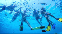 Boat Tour and Snorkeling Adventure Combo, Miami, Snorkeling